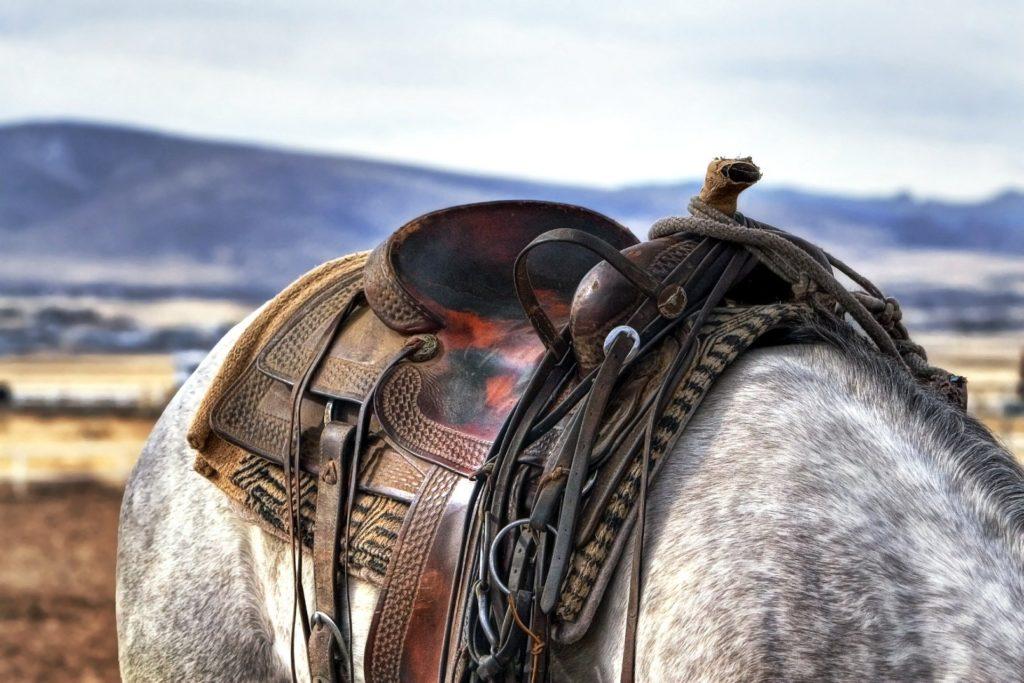 silla de montar western
